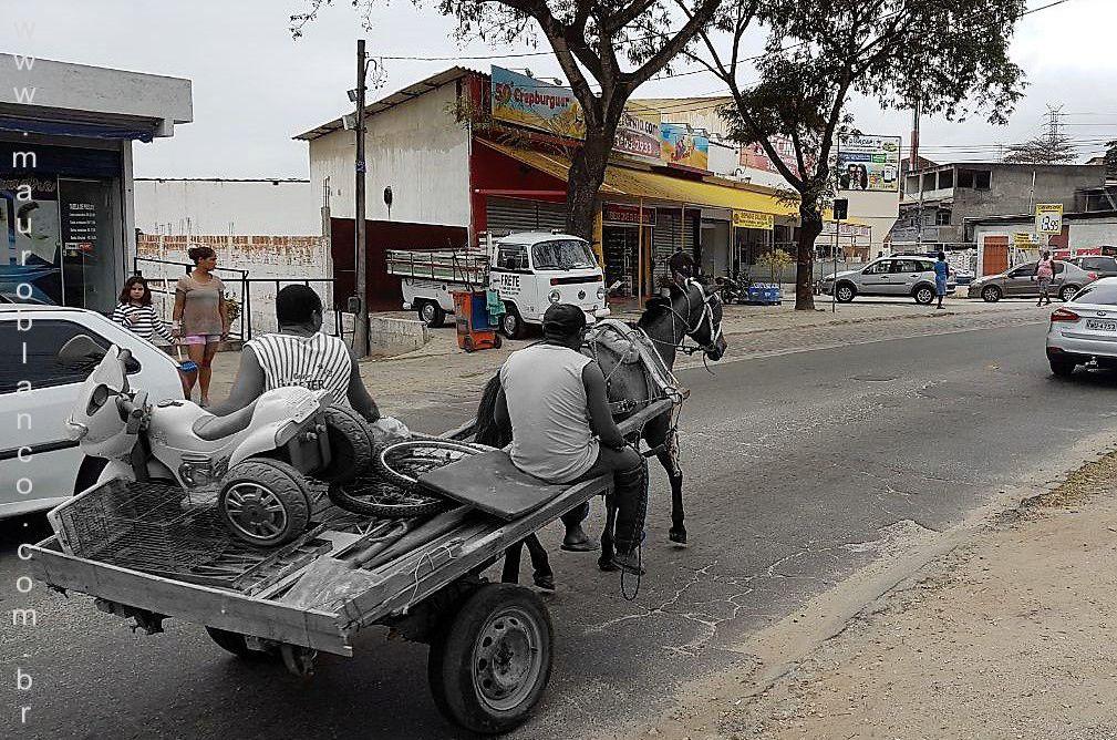 A carroça na frente das leis
